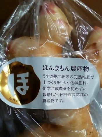 臼杵 生姜
